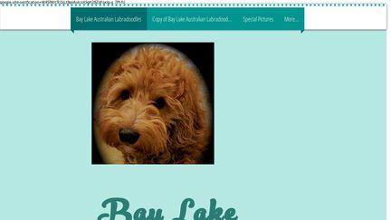 BayLakeDoodles.org
