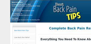 Bestbackpaintips.com
