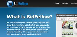 Bidfellow.com