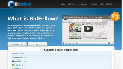 Bid Fellow