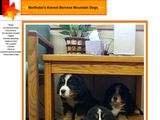 Northstar's Kennel Bernese Mountain Dogs