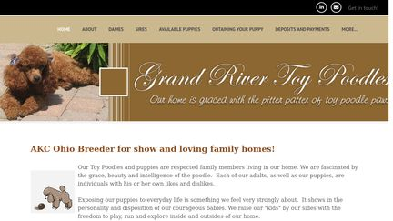Grand River Poodles