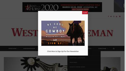 Horsecity.com
