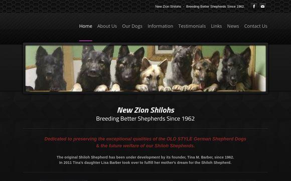 NewZionShilohs.org