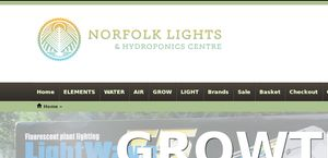 Norfolk Lights