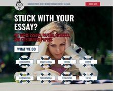 Professor-Essays