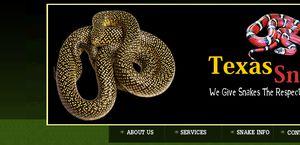 Texas Snakes