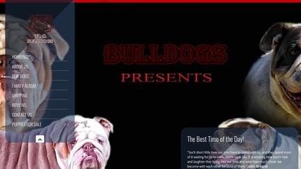 WoEnglishBulldogs